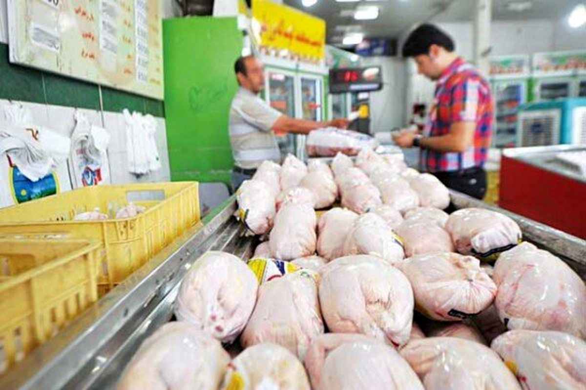 قیمت مرغ 99|پیش بینی قیمت عجیب مرغ و تخم مرغ